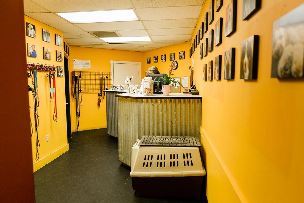 Entryway at Dog Buddies Daycare